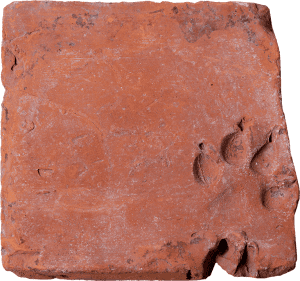 Tile with a dog's paw print